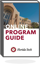 program guide image